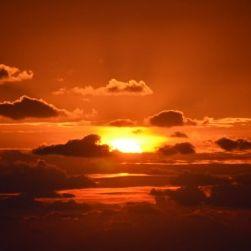 ジャルパックの家族旅行&ハワイツアーが肝になる!?ガイアの夜明け「JAL ハワイ決戦!~シリーズ「激烈!航空戦争」前編~」